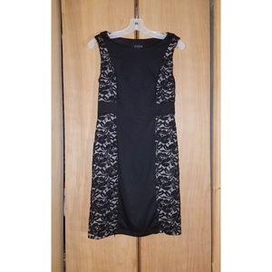  Enfocus Studio  Sleeveless Lace Dress
